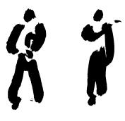 Kampfkunst und Management