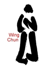Wing Chun 詠春拳